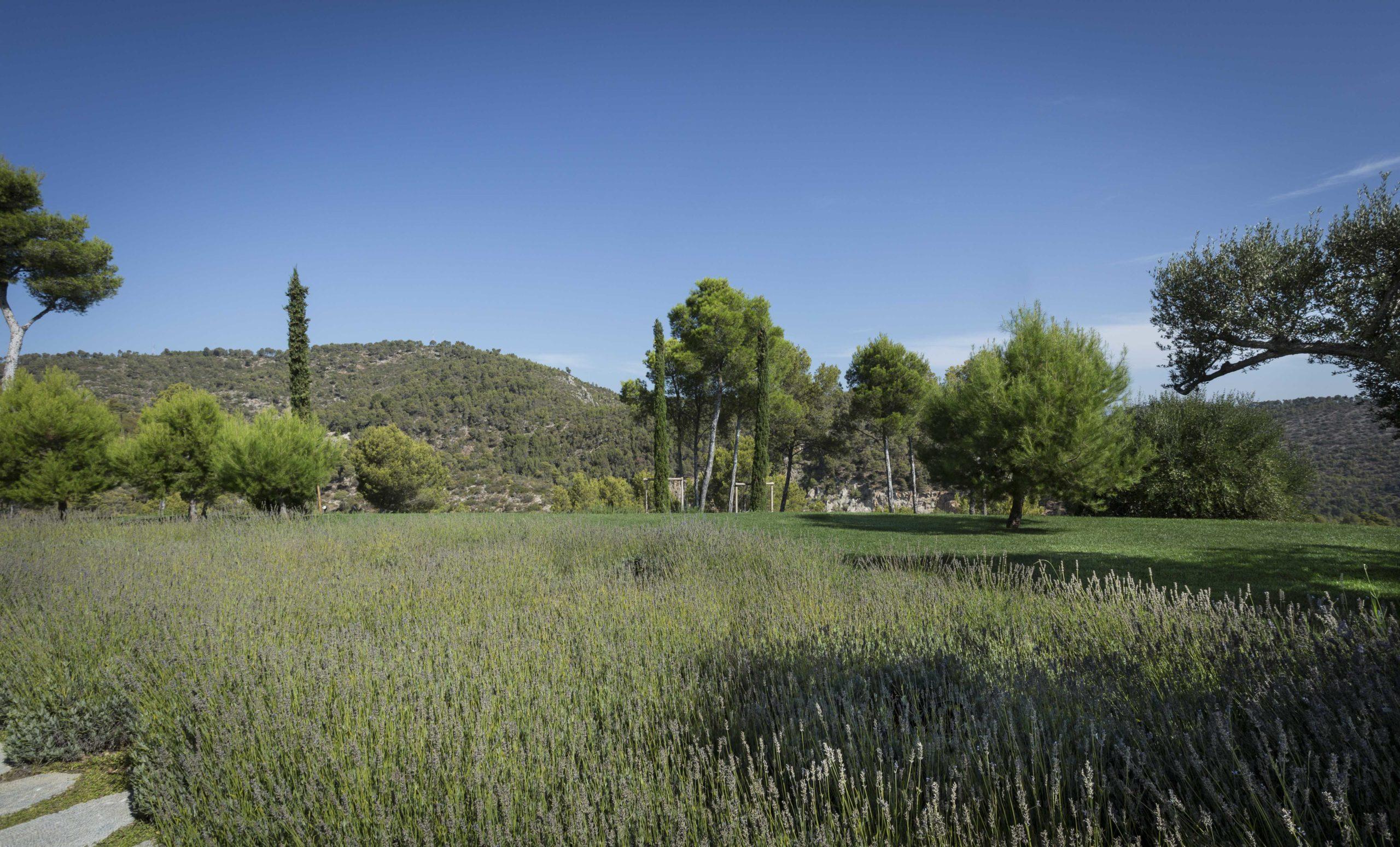 Jardins Tramuntana WEB_11