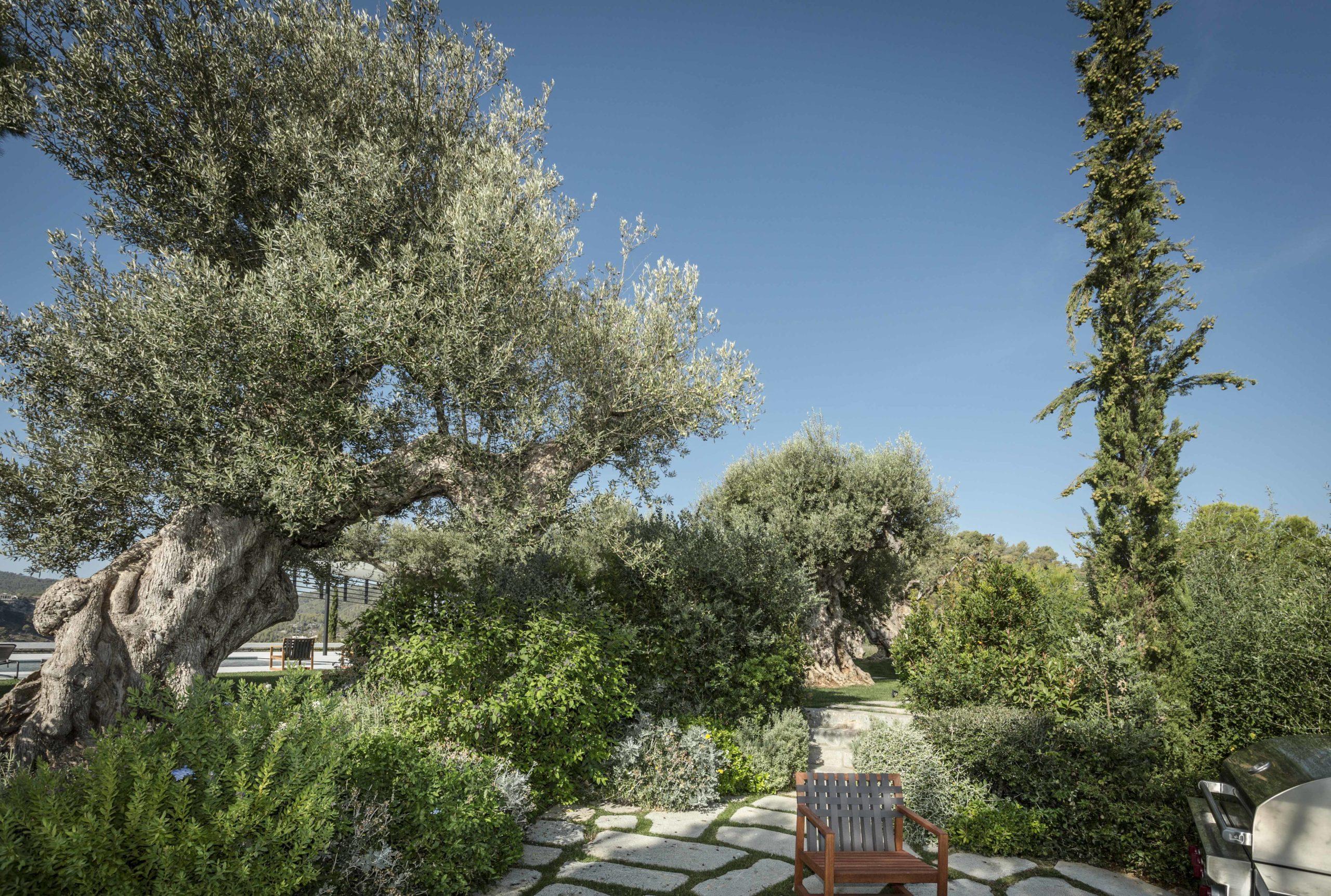 Jardins Tramuntana WEB_15