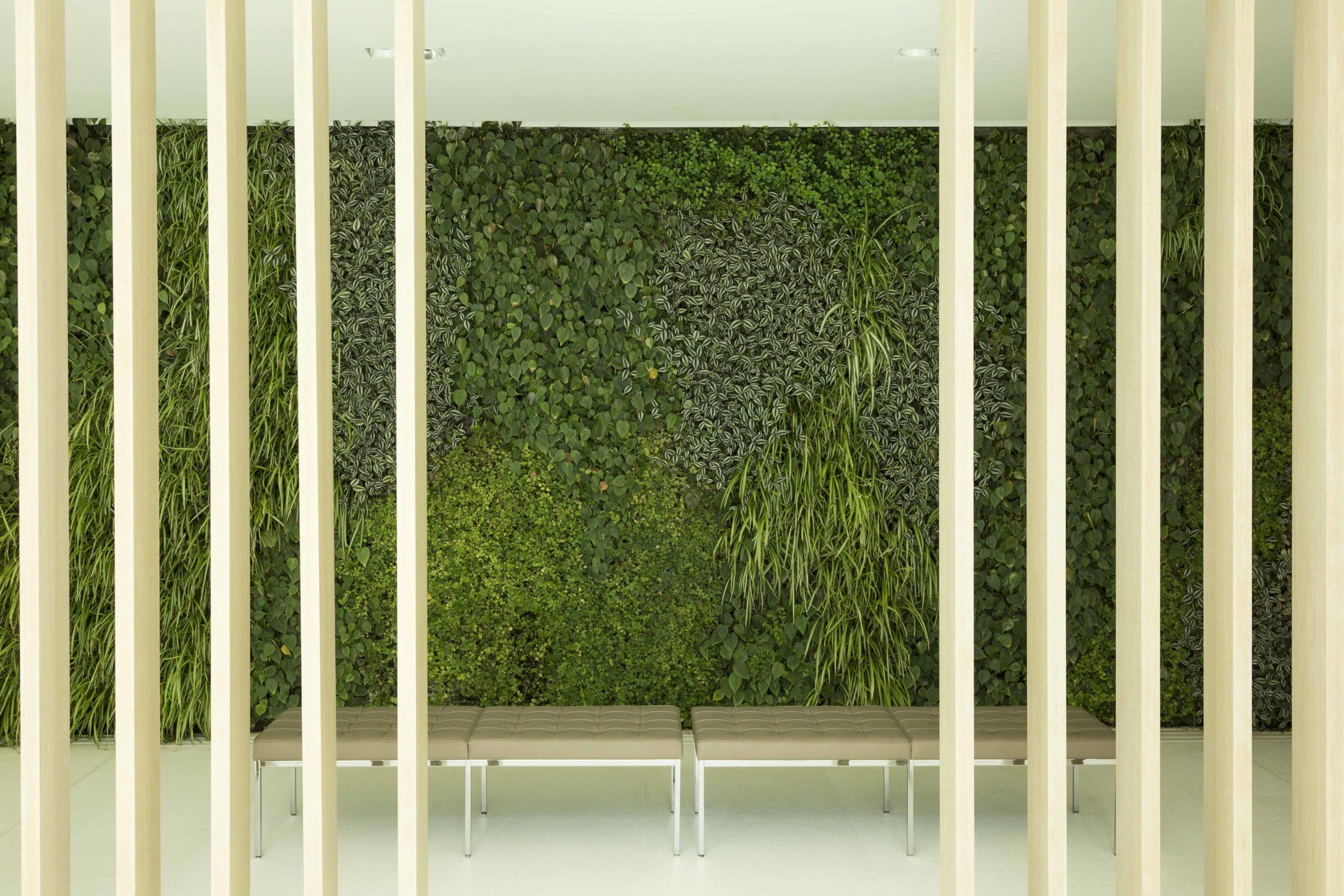 green-cliffs5